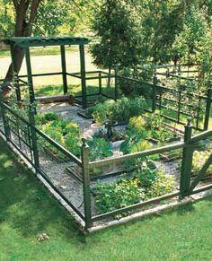 Adorable garden-producing plenty for a family of 4