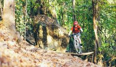 The Top Five Mountain Bike Trails in Alabama: A sampling of the best singletrack in the state
