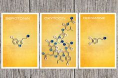 The molecules of Happiness Poster Set