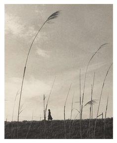 arsvitaest:  Shikanosuke Yagaki, Wheatfields, 1930s, gelatin silver print