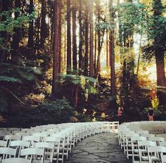Enchanted Forest ♥ A wedding you will only find in the Northwest. Being surrounded by giant sequoias will give you a feeling of being intimately secluded and surrounded by nothing but love @BlushEvents310