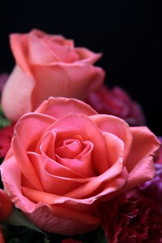 My favorite color for flowers is  primarily the blue and purple shades.  But Roses it's the pretty  pinks.  happy day out