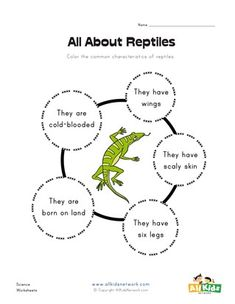 What is a reptile? Printable reptile book by TwistyNoodle