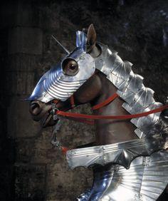 Horse armour of Waldemar VI, Duke of Anhalt-Zerbst. German, about 1480