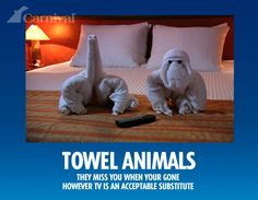 Towel Animals: They Miss You When You're Gone... Presented by Carnival's Towel Animal Theater. Discover how to make towel origami at: http://FoldingMagic.com