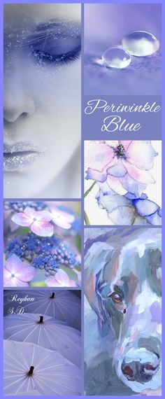 '' Periwinkle Blue with a little Pink '' by Reyhan S.D.