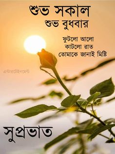 Happy Good Morning Quotes, Good Morning Images Download, Good Morning Photos, Good Morning Messages, Morning Pictures, Happy Valentines Message, Valentine Messages, Good Morning Animation, Monday Quotes