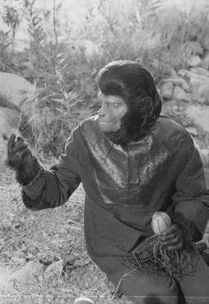 Planet of the Apes TV Series Stills from Mark Talbot-Butler - Page 6