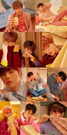 WANNA ONE My Big Love, I Love Bts, Kang Daniel Produce 101, Yg Entertaiment, Ong Seung Woo, You Are My Life, Lai Guanlin, Produce 101 Season 2, Ha Sungwoon