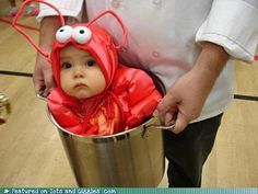 I want a lobster baby