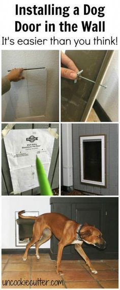 Installing a dog door in the wall may seem intimidating at first, but it turned …