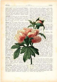 Wall art Vintage Botanical  Illustration Peony Print on Vintage Book page- Home wall decor. $7.99, via Etsy.