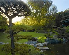 The koi pond at sunrise at Golden Door Spa in Escondido, California