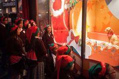 2015 Macys Holiday Windows: Pet Adoption Displays | Union Square