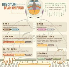 This is your Brain when you play the piano. This brilliant graphic shows the many benefits of sitting down at your piano. Harmony Music, Music And The Brain, Online Music Lessons, Piano Teaching, Learning Piano, Early Learning, Teaching Kids, Fun Brain, Playing Piano