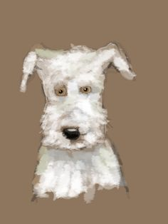 Digital sketch of Harry on the iPad mini using Autodesk Sketchbook.
