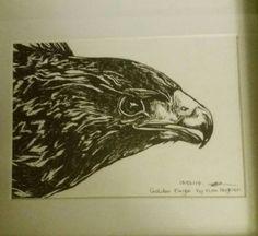 Golden eagle original black ink.