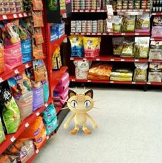 10 endroits insolites où trouver un Pokémon avec PokémonGo !!