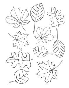 Fall Leaves Coloring Pages, Fall Coloring Sheets, Leaf Coloring Page, Pumpkin Coloring Pages, Coloring Pages To Print, Free Printable Coloring Pages, Free Coloring, Coloring Books, Free Printables