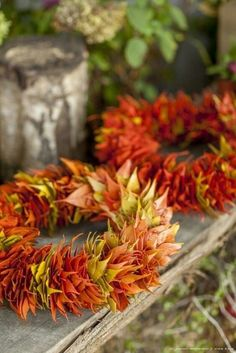 Coole Herbstdeko aus Zapfen, Laub und Eicheln basteln: 24 Inspirationen, die euch bezaubern werden Make cool autumn decorations with cones, leaves and acorns: 24 inspirations that will charm you Autumn Decorating, Fall Decor, Nature Crafts, Fall Crafts, Deco Nature, Deco Floral, Autumn Wreaths, Diy Flowers, Door Wreaths