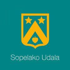 Resultado de imagen de imagen logo plentzia udala