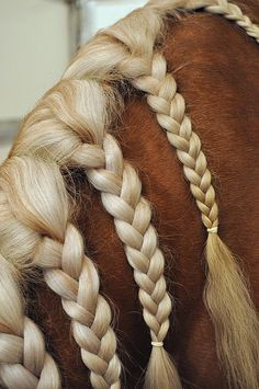 chunky braids                                                       …