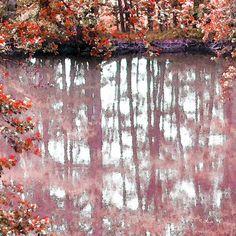 'Bunte Spiegelei' von Dirk h. Wendt bei artflakes.com als Poster oder Kunstdruck $19.41