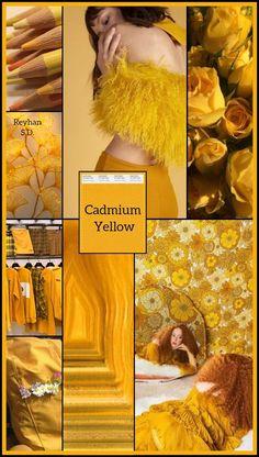 '' Cadmium Yellow / Pantone Sp 2019 '' by Reyhan S. '' Cadmium Yellow / Pantone Sp 2019 '' by Reyhan S. Colour Pallette, Colour Schemes, Color Trends, Color Patterns, Color Combos, Yellow Pantone, Pantone Color, Yoga Studio Design, Color Collage