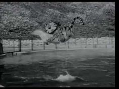 Kellogg's Frosties - Marineland (1960's, UK) Tony the Tiger loses his luck to a live-action dolphin. Featuring the vocie of Thurl Ravenscroft.