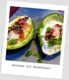 Gefüllte Avocado - das Schlankheitsgeheimnis zum Frühstück - Low Carb Breakfast