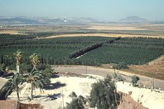Valley of Jezreel, and in the distance is Nazareth and Mount Tabor