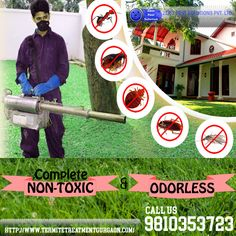 Zero pest solution pvt.ltd is a prominent registered pest control organization approved by the govt.  and ISO certified .We provide the reliable services like Anti termite treatment, Rodent, cockroaches, pest, bed bugs control for residential and commercial area with odorless,hassle free and effective solution for all pest control activities to our clients.