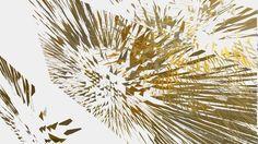 Posterbook FLOWER EXPLOSION - PHOTO ART° by Rosemarie Hofer im Handel