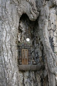 This is what I imagine my fairy doors should be used for. Fairy Door -High in a notch of the tree Fairy Garden Houses, Gnome Garden, Garden Art, Garden Design, Fairy Tree Houses, Fairy Garden Doors, Forest Garden, Garden Trees, Fairy Village