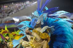 FOTO ANDRE TELLES SALGUEIRO 2014 4457.jpg