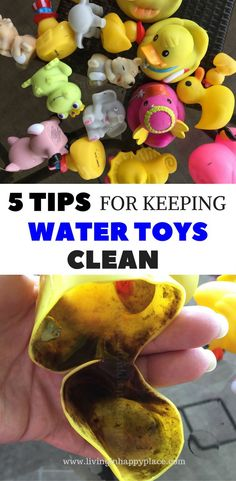 Water toys for kids can be really tough to keep clean. Safely clean bath toys and water toys to keep mold and bacteria from growing inside. Baby bath toys and toddler water toys can easily be a breading ground for grime. Try these 5 tips for keeping wate Kids Water Toys, Bath Toys For Toddlers, Kids Bath, Toddler Toys, Kids Toys, Baby Toys, Bath Toys For Babies, Baby Baby, Toddler Girls