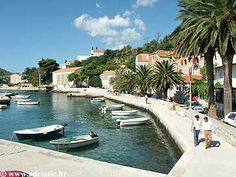 Mlini - Dubrovnik, Croatia - Private accommodation units - Adriatic.hr