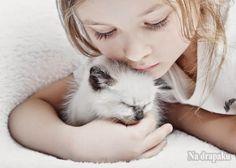 Mamo, tato, ja chcę kotka!