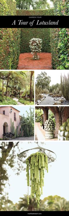 Designed in 1919 by noted architect Reginald Johnson, the 8,800-square-foot Spanish-style mansion in California once housed the collections of Madame Ganna Walska, the garden's creator. The front garden features Madame's oddly shaped cacti.