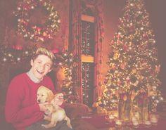 niall horan christmas funny
