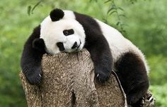 Hard day....