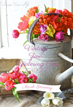 March Giveaway: Vintage Zinc Watering Can