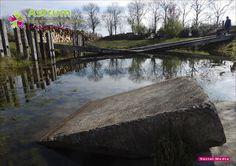 Detail van een stapsteen in de natuurlijke vijver in de Wilde Weelde Wereld in Appeltern (Modeltuin).