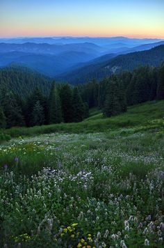 from Mt. Ashland, Oregon at dusk <3 southern Oregon is so incredibly beautiful!