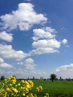 """""""Denkend aan Holland zie ik brede rivieren, traag door oneindig laagland gaan..."""" - H. Marsman  (1899-1940)  http://nl.wikipedia.org/wiki/Herinnering_aan_Holland"""