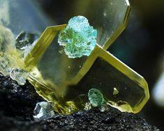 Minerals And Gemstones, Rocks And Minerals, Nevada Usa, Rocks And Gems, Geology, Gemstone Jewelry, Quartz, Nature Pics, Crafts