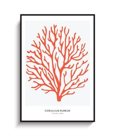 Red Coral Large Poster - PRINTABLE FILE.  Red Sea Coral Print. Coral Illustration. Marine Beach Nautical Coastal Print. Marine Life.