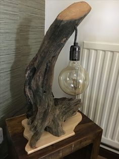 Driftwood Lamp, Driftwood Projects, Rustic Lamps, Wood Lamps, Diy Concrete Planters, Wood Floor Lamp, Diy Outdoor Table, Wood Clocks, Wood Creations