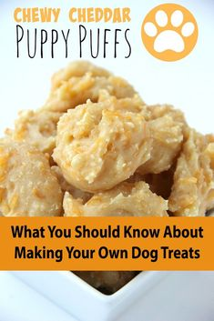 Rather of using white flour in your pet dog cookies or any other homemade dog food, you can use whole grains like quinoa, oats and brown rice instead. Easy Dog Treat Recipes, Healthy Dog Treats, Homemade Dog Cookies, Homemade Dog Food, Make Dog Food, Easy Food To Make, Pet Food, Dog Biscuit Recipes, Dog Food Recipes