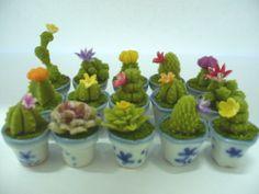 Set of 15 Cactus Plant in Ceramic Pots Dollhouse Miniatures Deco Garden-6 .  So realistic !!! Love it !!